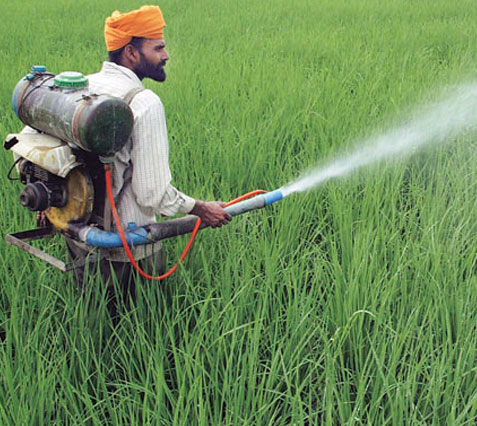 Pesticides and their Use